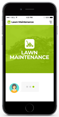 lawn maintenance examples